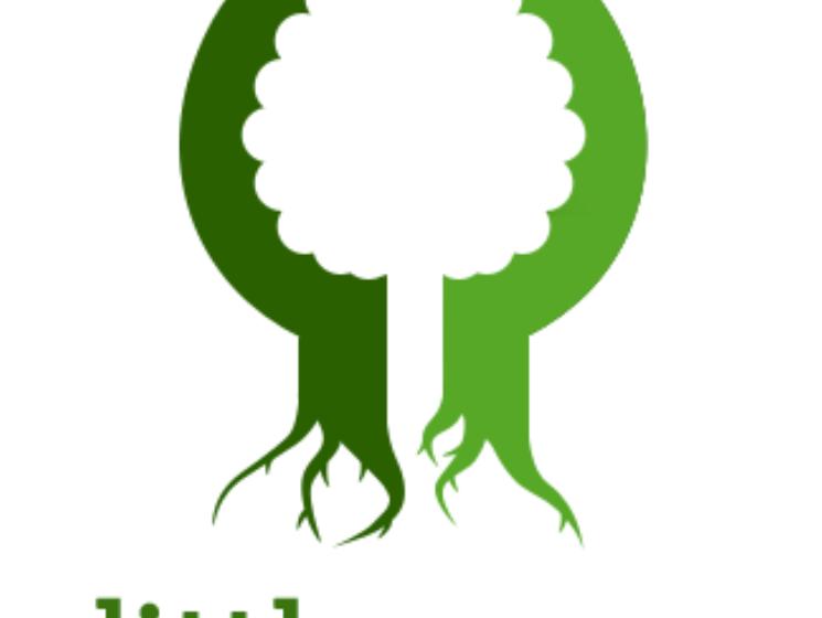 Představujeme projekt: Little Green