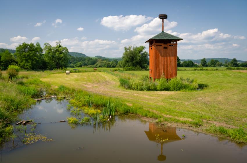 Fotogalerie nápadů: Jak zadržovat vodu v krajině
