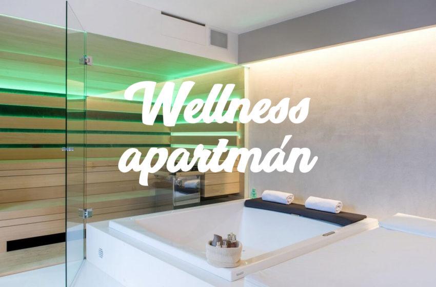 Investiční příležitost- Wellness apartmán v Ostravě